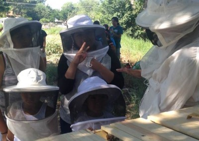 Environment Activities - Bee Keeping